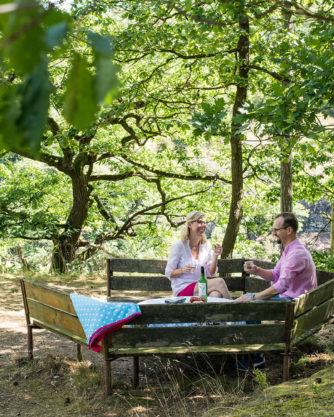 Picknick beim Königstein