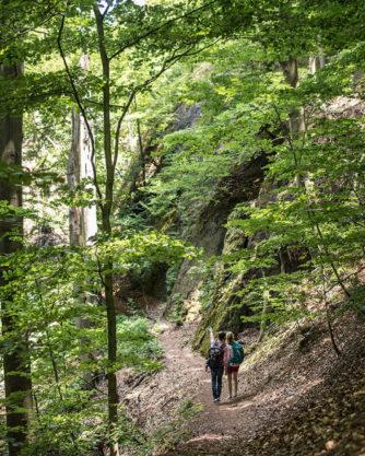 Wanderpfad zur Wartburg